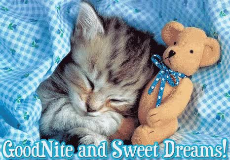 Watch and share Good Night Cute Cat Animated Graphic Picture GIFs on Gfycat