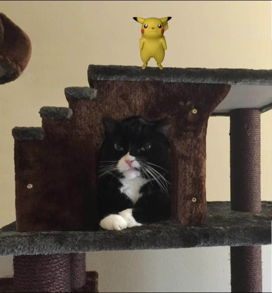 photoshopbattles, PikachuDancing GIFs