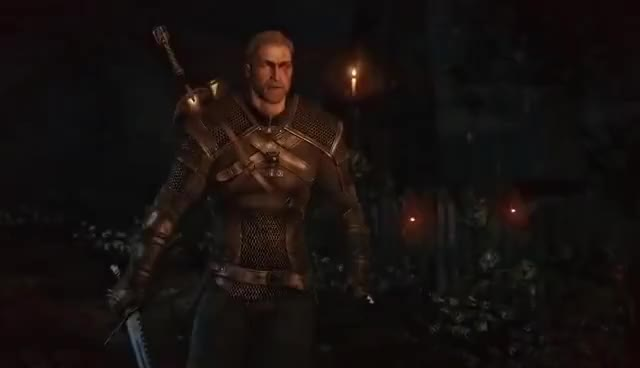 Watch and share The Witcher GIFs on Gfycat