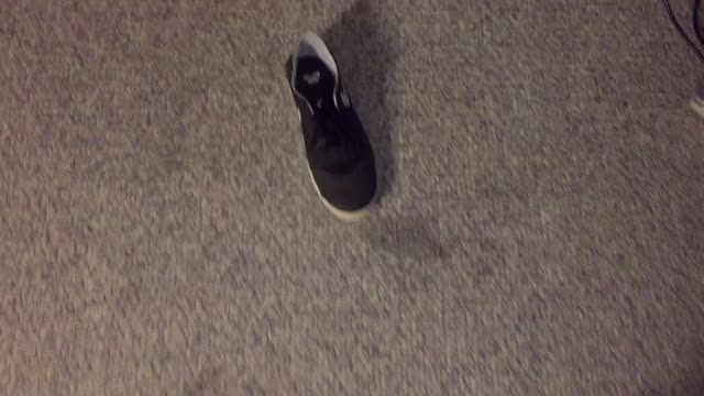 Watch shoe GIF on Gfycat. Discover more related GIFs on Gfycat
