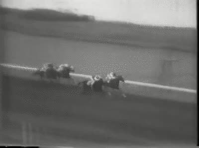 Watch and share Racing GIFs on Gfycat