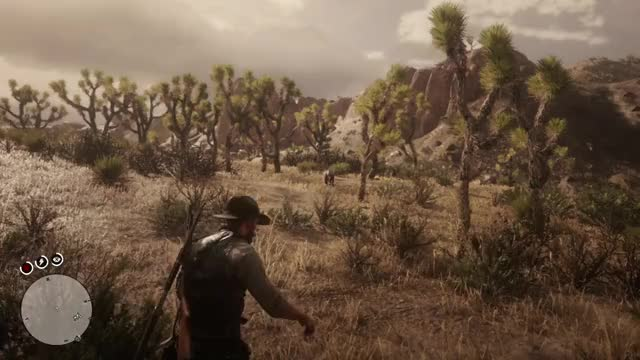 Watch Cougar GIF by Gamer DVR (@xboxdvr) on Gfycat. Discover more PrimeSniper218, RedDeadRedemption2, xbox, xbox dvr, xbox one GIFs on Gfycat