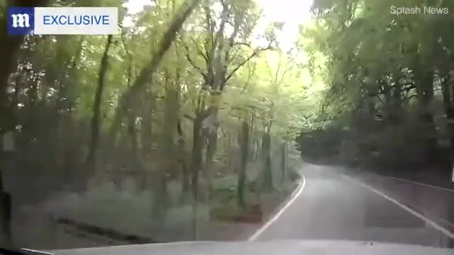 Watch and share Dash Cam GIFs and Dashcam GIFs by notmyproblem on Gfycat