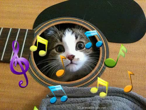 Watch and share Free Musical Clip Art Animated Free Download Your Webpages Facebook Lenses Or Arts Crafts Cute Kitten Music Cat Animals Music Colors Animated Free Photo Ecards GIFs on Gfycat
