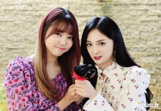 Watch and share Kyulkyung GIFs and Nayoung GIFs by stfwrtfm on Gfycat