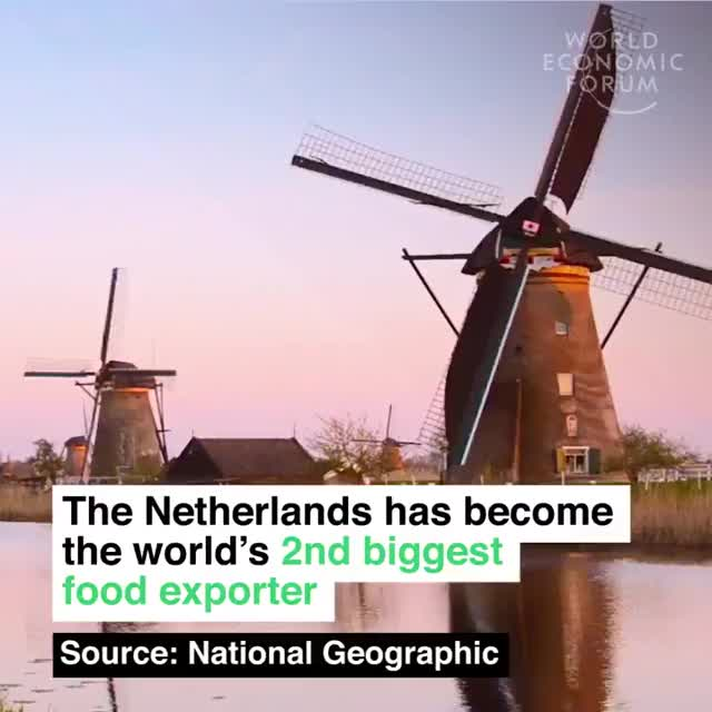 Watch and share Netherlands Farming Success GIFs on Gfycat