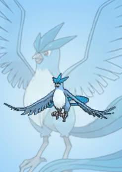 Watch aaaaaa GIF on Gfycat. Discover more articuno, gen 1, kanto, legendary birds, metaphorart, pkmn, pokemon GIFs on Gfycat
