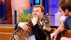 Watch and share Christoph Waltz GIFs and Tiger GIFs on Gfycat