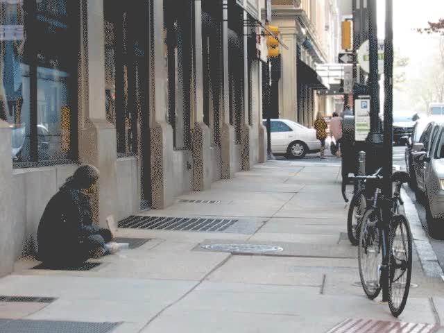 Watch and share Homeless Bull GIFs by bigxdaddyxkush on Gfycat