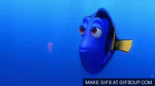 Watch and share Dory * GIFs on Gfycat