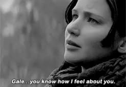 Watch the hunger games; GIF on Gfycat. Discover more by paola, catching fire, cfedit, fythgedit, gif, katniss everdeen, request, thgedit GIFs on Gfycat