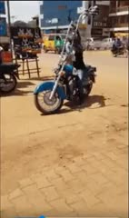 Watch and share Inventing Some New Ways Of Riding Gifs GIFs by wgif on Gfycat