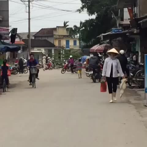 Watch and share A Duck Soon To Become A Delicious Lunch #duck #market #hue #vietnam #streetlife As Ruas E Suas Belezas. Pato Vai Pro Prato. GIFs by Tonon Gui on Gfycat