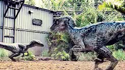 Watch and share Jurassic World GIFs and Raptor Squad GIFs on Gfycat