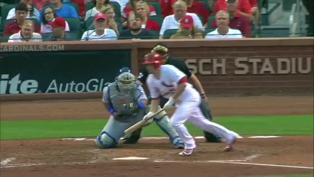 Watch and share Perez Wraps Up The Umpire GIFs on Gfycat