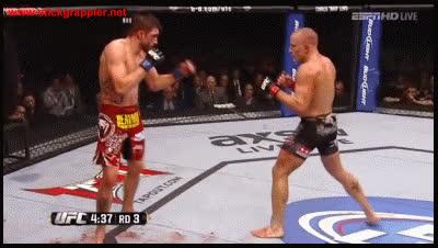 UFC 154 GIFs
