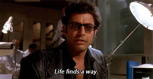 Watch this trending GIF by Reaction GIFs (@sypher0115) on Gfycat. Discover more Jeff Goldblum, you can do it, you go girl, you got this GIFs on Gfycat
