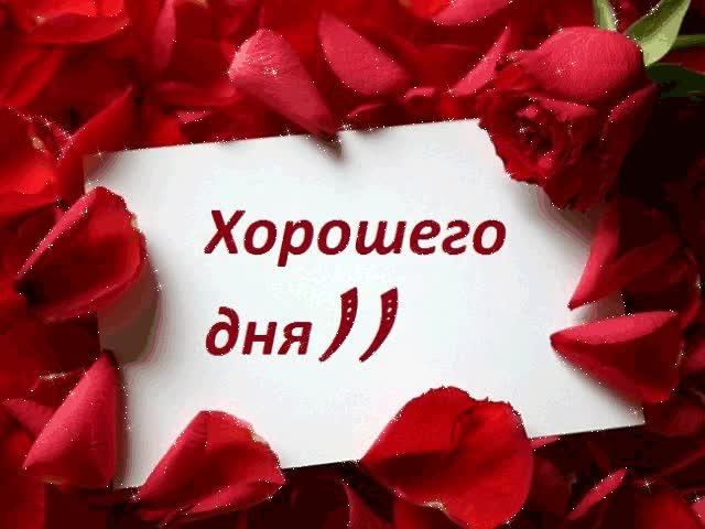 Watch and share Плейкаст «С Добрым Утром!Хорошего Дня!!!» GIFs on Gfycat