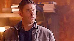 Watch this trending GIF on Gfycat. Discover more 12000 followers, 12k, 12k followers, I'm kind of a researcher and record keeper at heart, Jensen Ackles, WOW you guys!, and I only publish follower milestones so I can look back someday and remember what this was like, just wow!, new followers, personal GIFs on Gfycat