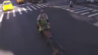 amazing, bike, weird, Weird bike in NYC GIFs