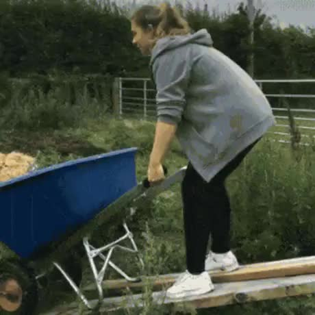 Watch and share Farmwille GIFs and Ville GIFs by gifler on Gfycat