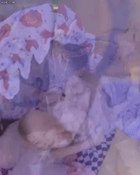 Watch and share 로켓펀치 연희 눕방 GIFs on Gfycat