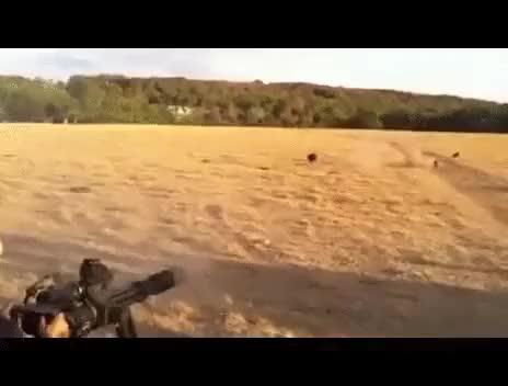 Watch and share Boar Hunting With A Minigun. (i..com) GIFs on Gfycat