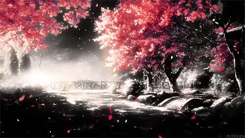 Watch and share Cherry Blossom Gif GIFs and Cherry Blossoms GIFs on Gfycat