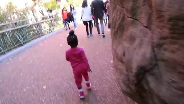 Watch JAXSON & JAYLA GO TO BOO AT THE ZOO! 👶🏽👶🏾😍 GIF on Gfycat. Discover more Jayla, Pregnancy, Twins, diet, expecting, fitness, halloween, holidays, itsjudyslife, jaxson, jesssfam, teamtransformation, thesocialitelife, thesocialitelifetv, toddler, workout GIFs on Gfycat