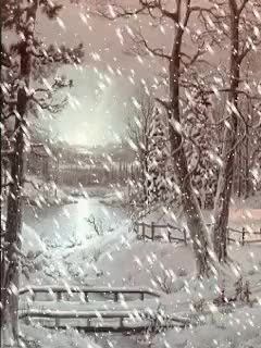 Watch and share Heavy Snowfall In Woods Animated GIFs on Gfycat