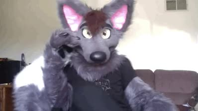 Watch and share Furry GIFs on Gfycat