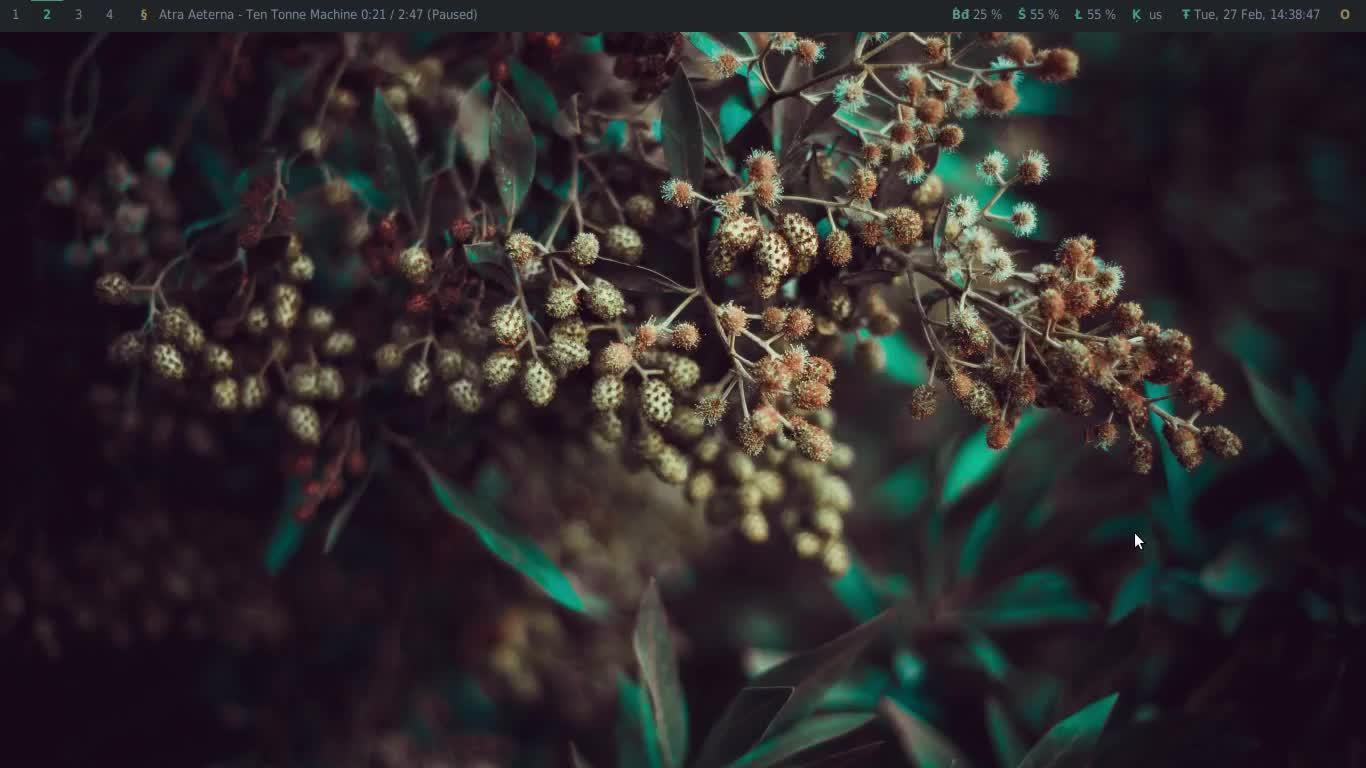 bspwm, linux, tempus-themes, [bspwm] Script to change all themes on demand GIFs