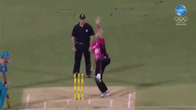 Watch Some Cricket Gifs! GIF on Gfycat. Discover more related GIFs on Gfycat