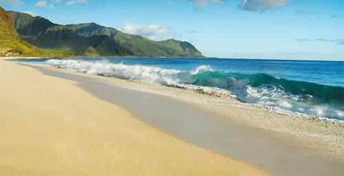 Watch and share Vacation Beach GIFs on Gfycat