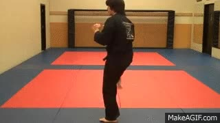 Watch and share Karate Kick GIFs on Gfycat
