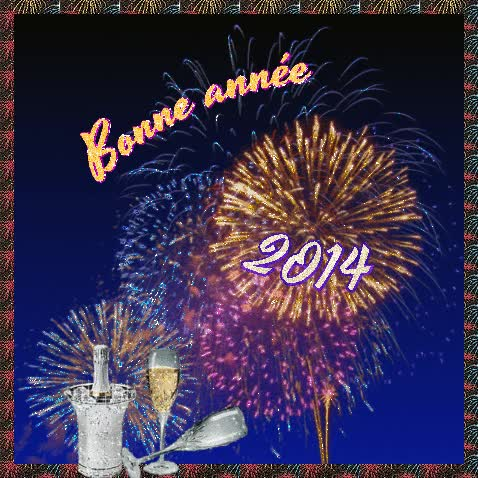 Watch and share Bonne-annee-2014 GIFs on Gfycat