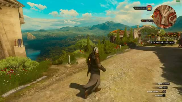 Watch and share Witcher GIFs by theranis on Gfycat