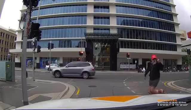 Watch and share Angry Pedestrian Walks Into Pole GIFs on Gfycat
