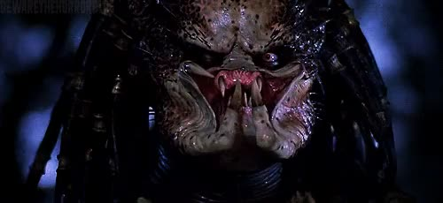 Watch this predator GIF on Gfycat. Discover more predator, the predator GIFs on Gfycat