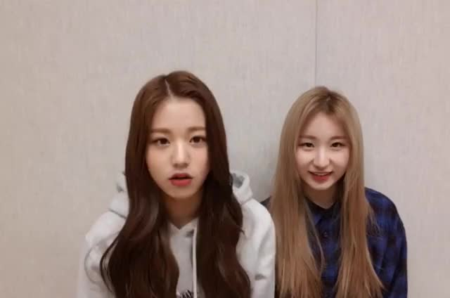 Watch IZ*ONE   Wonyoung   CloseUp GIF by kpopgg on Gfycat. Discover more related GIFs on Gfycat