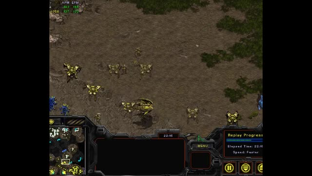 Watch and share Brood War GIFs and Starcraft GIFs by anthony356 on Gfycat