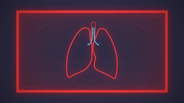 Watch How does asthma work? - Christopher E. Gaw GIF on Gfycat. Discover more All Tags, Asthma, INHALER, Ted, beta-agonist, breathing, bronchioles, constriction, corticosteroids, hyperinflation, lungs, mucosa, pollen, smoke, ted-ed, wheezing GIFs on Gfycat