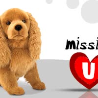 Watch and share Missing You GIFs on Gfycat