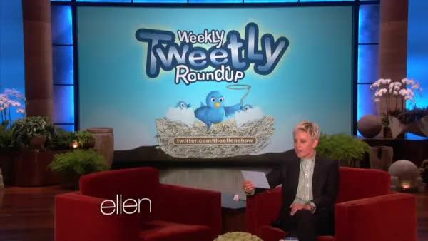Weekly Tweetly Roundup: Panic Attack! (reddit) GIF   Find