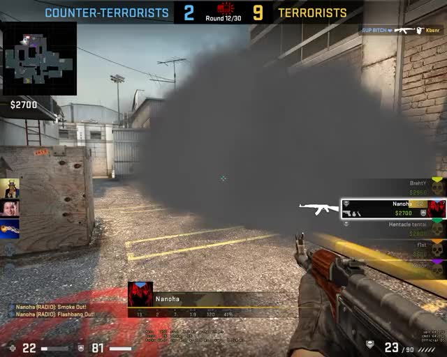 Watch and share Counter-strike Global Offensive 2019.02.01 - 01.00.43.03.DVR Trim GIFs on Gfycat