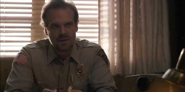 Watch and share Stranger Things GIFs and David Harbour GIFs on Gfycat
