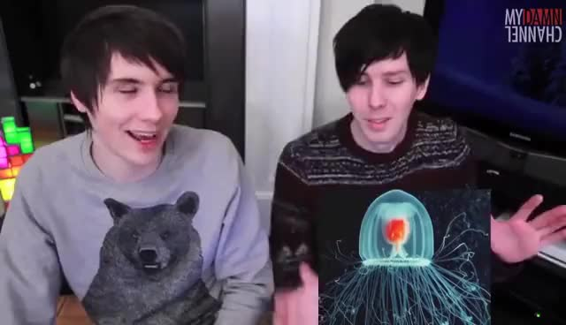 Watch and share Phil GIFs and Dan GIFs on Gfycat