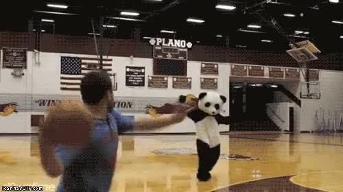 Watch basketball fails GIF on Gfycat. Discover more related GIFs on Gfycat