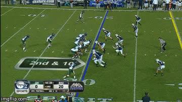 28. Carolina Panthers GIFs