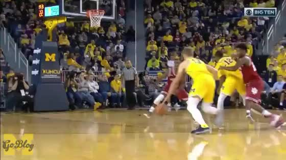 Watch and share Between The Legs GIFs and Moritz Wagner GIFs by MGoBlog on Gfycat